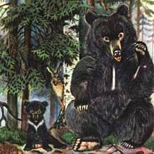 О Медведихе