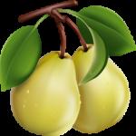Продавец груш