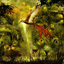 Золотая птичка и дух дерева