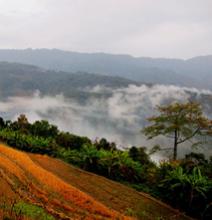 Сказки штата Нагаленд