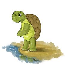 Сказки о черепахе