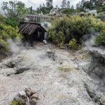 Почему в стране Маори так много гейзеров