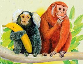 Это всё обезьяны