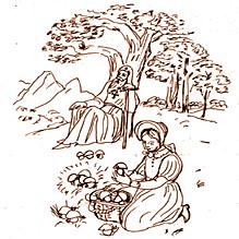 Грибы отца Самсония