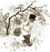 Как мальчик рассказывал про то, как его в лесу застала гроза
