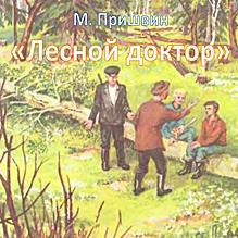 Лесной доктор