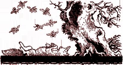 Лисица и пчёлы